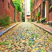 Fall Foliage Escape (Self-drive)