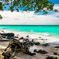 Panama City - Cartagena - Baru Island