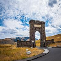 Billings and Yellowstone Park (Self Drive)