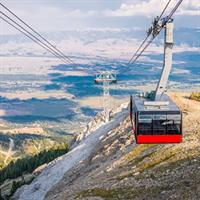 Grand Teton and Yellowstone National Park (Self Drive)