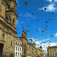 Bogota - Cartagena - Barranquilla