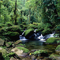 Arenal Volcano - Monteverde Cloud Forest