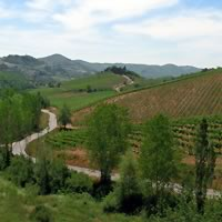 Florence and Radda in Chianti