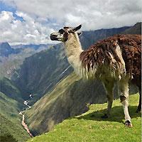 Lima - Cuzco - Machu Picchu