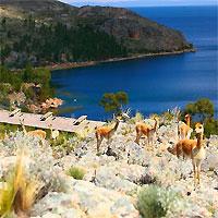 Colca Canyon - Lake Titicaca - Machu Picchu