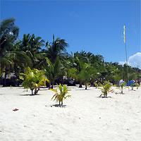 Manila - Siargao Island - Cebu by Air