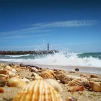 The West Algarve Getaway (Self Drive)