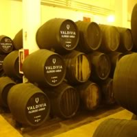Madrid - Seville and the Sherry Triangle