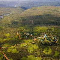 Mountain Pine Ridge - Placencia - Turneffe Islands