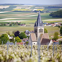 French Wines Route