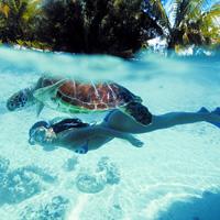Bora Bora Idyllic Getaway