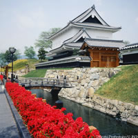 Tokyo and Kyoto with Rail Pass