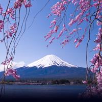 Tokyo - Kyoto - Hakone with Rail Pass